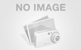 Komatsu D-355 C